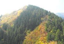 兰州兴隆山
