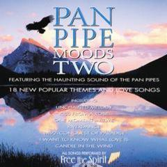 pan pipe moods two