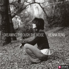 dreaming through the noise