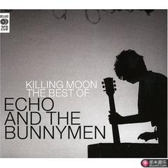 killing moon: the best of echo & the bunny