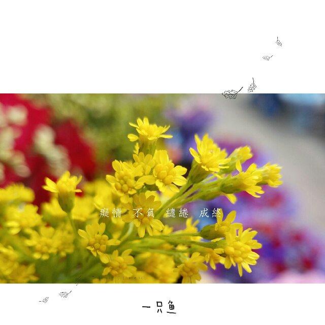 IMG_20170320_171232_compress.jpg