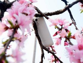 """祝""""360手机""""品牌一周岁生日快乐!"""