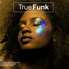 true funk(3 cd set)