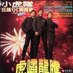 虎啸龙腾(狂飙95演唱会全记录)