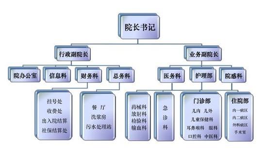 组织结构示意图