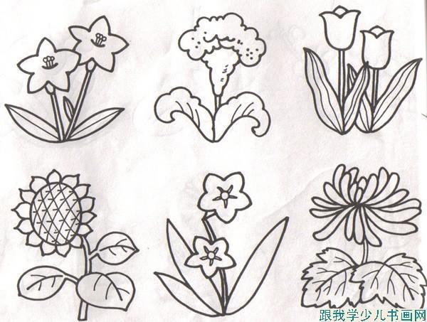 四年级下册美术教案(植物写生),简笔画大全,怎么画