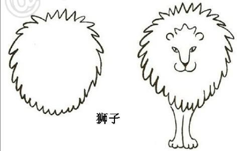 一盆菊花的简易画法3