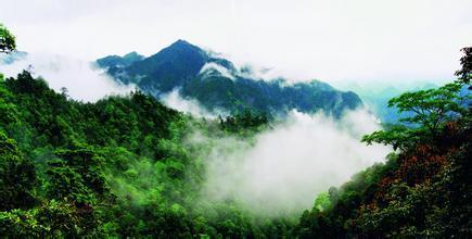 韶关市  南岭国家森林公园总面积273平方公里