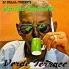 verde terrace (mixtape)